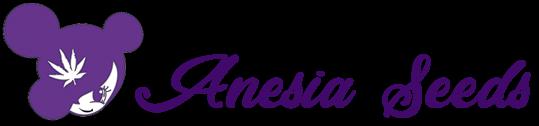 Anesia Seeds Wholesale
